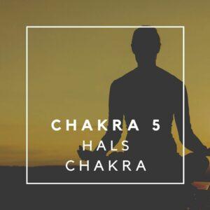Hals Chakra